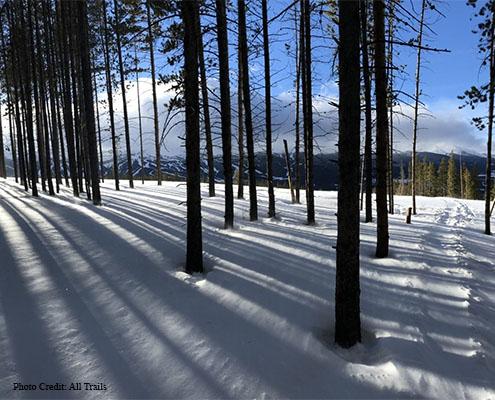 Moonstone Trail